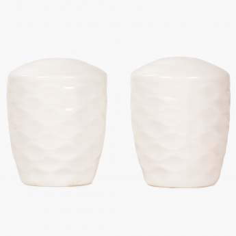 HOME CENTRE Brook Salt and Pepper Shaker Set