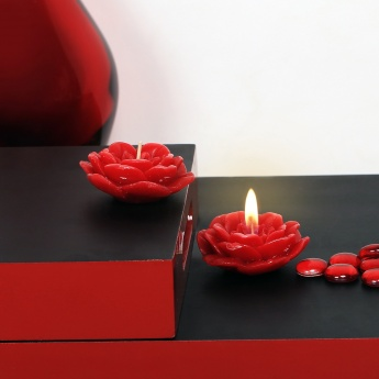 HOME CENTRE Redolance Decorative Floating Candle- Set Of 2 - 4 CM